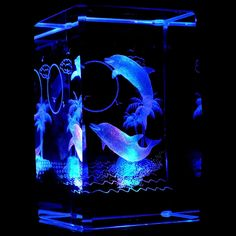 # Dolphins with Full Moon 3D Laser Etched Crystal