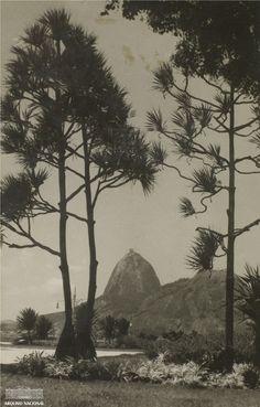 Praia de Botafogo, Rio de Janeiro, 1955. Arquivo Nacional. Fundo Correio da Manhã. BR_RJANRIO_PH_0_FOT_04880_001