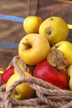 Apple by Ledokollov