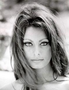 Amazing Life Lessons From Glamorous Movie Siren Sophia Loren - Career Girl Daily Sophia Loren, Gina Lollobrigida, Brigitte Bardot, Carlo Ponti, World Most Beautiful Woman, Portraits, Ava Gardner, Star Wars, Angelina Jolie