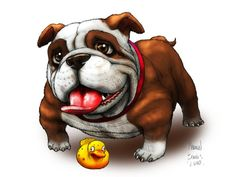 Find Out More On The Playful French Bulldog Dogs Size Bulldog Meme, Bulldog Cartoon, Bulldog Mascot, Grey French Bulldog, French Bulldog Facts, French Bulldog Puppies, Olde English Bulldogge, Cute Bulldogs, Bullen