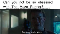 """Yep. Or when someone asks me to explain to them """"The Maze Runner"""" series, I feel like I have to explain to them my life story."""