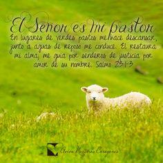 El Señor es mi Pastor!