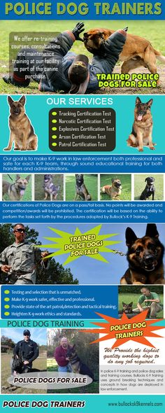 Check this link right here http://www.stumbleupon.com/stumbler/K9PoliceDogs for more information on Police Dog Trainers. Throughout the training, a particular idea that must be ingrained well to the dog's habits is need to secure as well as offer the pack leader- that is identified as the dog's instructor. The training's key goal is to show the dog to adhere to the fitness instructor's orders, respond to the trainer's demands, and secure him from threats. All throughout the police dog…