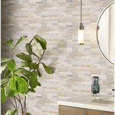 MSI x Natural Stone Peel & Stick Mosaic Tile in Golden Honey Self Adhesive Backsplash Tiles, Peel Stick Backsplash, Peel And Stick Tile, Stick On Tiles, Wood Panel Walls, Wood Wall, Marble Mosaic, Mosaic Tiles, Beveled Subway Tile