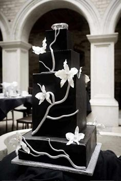 Black And White Orchid Elegance