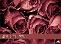 Marsala - Pantone 2015