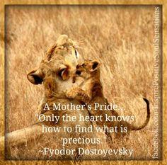 A Mother's Pride - F Dostoyevsky ♡ღ‿ღ♡⌒♡ღ‿ღ♡⌒♡ღ‿ღ♡