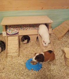 Luxus Traumvilla für Meerschweinchen, Kleintiere mit urindichter Auflage/Decke