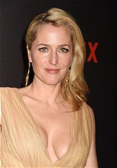 Image result for gillian anderson book series