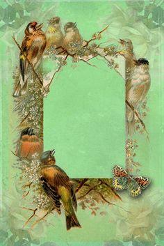 Astrid's Artistic Efforts: Freebie Vintage Birds Frame