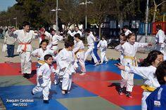 Campomaiornews: Demonstração de Judo da Casa do Povo de Campo Maio...
