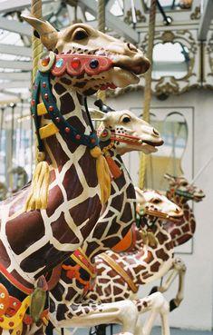 Children's Creativity Museum Carousel at Yerba Buena Gardens  Looff Outside Row Jumping Giraffe Head Close-Up  © Aaron Shepard