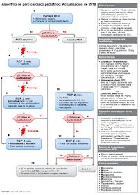 A summary of the key updates from the 2015 ACLS guidelines for cardiac arrest management from the AHA, ILCOR and the the ERC. Pals Algorithm, Heart Attack Treatment, Paramedic Student, Respiratory Therapy, Pediatric Nursing, Emergency Medicine, Nursing Notes, Medical Information, Humor