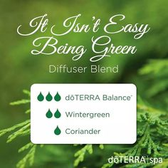Try this comforting blend to ease anxious feelings and promote relaxation. I am diffusing this blend in my home today and thoroughly enjoying the refreshing and relaxing qualities of each oil.  #essentialoils #diffuserblend