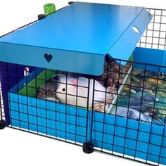 Cavy Canopy for C&C guinea pig cages with open tops Diy Guinea Pig Toys, Diy Guinea Pig Cage, Guinea Pig Food, Pet Guinea Pigs, Guinie Pig, Guinea Pig Breeding, C&c Cage, Animal Room, Pets For Sale