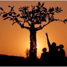 BelAfrique your personal travel planner - www.BelAfrique.com