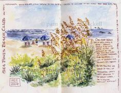 South Carolina LowCountry Nature Journaling and Art - Pam Brickell