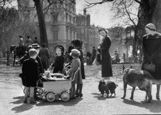 Children playing and people walking their pets in the park on a lovely spring day. Photograph by Cornell Capa. London, February 1951.