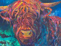 Young Highland yearling bull by artist Shannon Ford