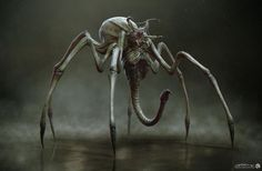 Unused Predator Spider creature concept from The Predator is pure nightmare fuel - The Predator Movie News Monster Concept Art, Alien Concept Art, Creature Concept Art, Fantasy Monster, Monster Art, Creature Design, Creepy Monster, Beast Creature, Cool Monsters