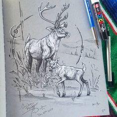 "Cass Womack on Instagram: ""Northern Caribou Reindeer for the nomad  creature series sketch book. 🦌 aka Holiday hooves 🌲 . . #natureartwork #sketching #sketchbook…�"