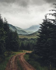 I must live in a place like this!Walking the highlands Beautiful World, Beautiful Places, Nature Aesthetic, Scottish Highlands, Art Plastique, Natural World, The Great Outdoors, Wonders Of The World, Paths