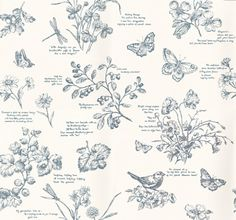 Nature Study Toile (PRL031/01) - Designers Guild Wallpapers - As if drawn from the illustrations of a botanical notebook, this true favourite with its wildlife and wild flowers brings the country garden indoors. Shown here in elderberry. Please request a sample for true colour match. Wide width.