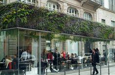 IlPost - Il giardino verticale che il botanico francese Patrick Blanc ha creato per il Trussardi Cafe a Milano, 18 aprile 2008 (Vittorio Zunino Celotto/Getty Images) - Il giardino verticale che il botanico francese Patrick Blanc ha creato per il Trussardi Cafe a Milano, 18 aprile 2008 (Vittorio Zunino Celotto/Getty Images)