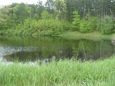 Schenectady County - Living - Nature Preserves and Trails, includes Indian Kill info