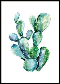 Watercolor cactus, posters in de groep Posters / Afmetingen / 50x70cm bij…