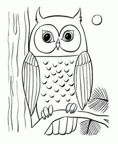 Owl To Draw and Owl for art projects  Owl Clan Art Project Ideas