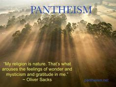 The idea of Pantheism is appealing - or at least much more than monotheism