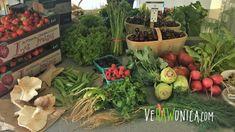 Farmer's Market Haul. What VeRAWonica ~ the Foodie Food Girl got for $10... Farmers Market, Raspberry, Marketing, Plants, Food, Strawberry Fruit, Farmers Market Display, Raspberries, Meals