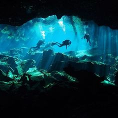 back from Mexico! Cenote diving, enter another world!