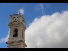 Guia UC na Torre da Universidade: 180 degraus até à melhor vista da cidade