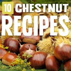 Fall in love with chestnuts like I did with these tempting chestnut recipes. Its subtle but hearty presence is the cornerstone to a delicious dish. Chestnut Flour Recipe, Chestnut Recipes, Tasty Dishes, Food Dishes, Thanksgiving Recipes, Holiday Recipes, Paleo Recipes, Cooking Recipes, Flour Recipes