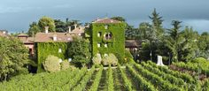 Have you seen our newest? L'Albereta, a luxury resort close to Lake Iseo in northern Italy. Part of Relais & Chateaux. and an amazing Spa! Pretty cool pictures too by the way. Italy For Kids, Cities, Italian Lakes, Northern Italy, Hotel Spa, Lake District, Great View, Hotels And Resorts, Vineyard