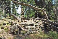 Le mur païen : un muret de pierres sèches qui court maladroitement sur 2,3 kilomètres