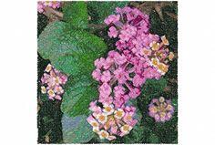 Pretty Flower Plant  Machine Embroidery Design...3025 by Letzrock