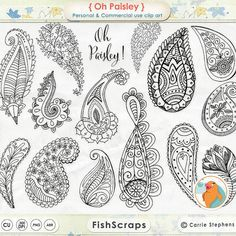 Paisley ClipArt - Digital Stamps - Bohemian Clip Art Doodles - Silhouettes & Outlines - PNG + Photoshop Brushes - Whimsical Graphics