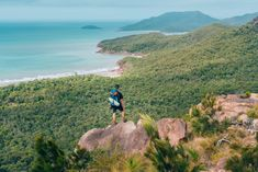 Searching for a hiking challenge? The famous Thorsborne Trail on Hinchinbrook Island is a four-day foray into some of Queensland's most celebrated scenery. Trail, Scenery, To Go, Hiking, Backyard, Island, Adventure, Mountains, Water