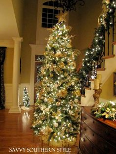 I want two Christmas trees when we have a house. One ( themed) for the entrance of our home and one (fun with all my ornaments) for the living room!!