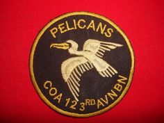 "US Army 123rd Aviation Battalion Company A ""PELICANS"" Vietnam War Patch"