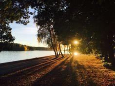 #finland #turku #ruissalo #autumn #nature