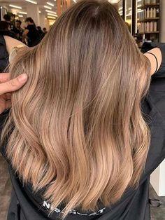 Brown Hair With Blonde Highlights, Honey Blonde Hair, Brown Hair Balayage, Hair Color Balayage, Hair Highlights, Bayalage Light Brown Hair, Dark Blonde Balayage, Warm Brown Hair, Balayage Straight Hair