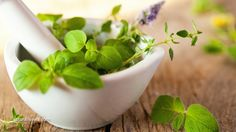 Three herbs that boost our immune system and guard us from infection