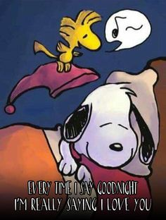 Nighty night snoop snoopy, snoopy, woodstock и snoopy love Snoopy Love, Snoopy E Woodstock, Charlie Brown Y Snoopy, Baby Snoopy, Snoopy Frases, Snoopy Quotes, Snoopy Comics, Peanuts Cartoon, Peanuts Snoopy