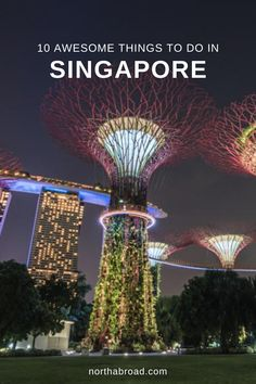 The best things to do in Singapore - the most amazing temples, areas, parks and cultural sights. Places To Travel, Travel Destinations, Places To Visit, Singapore Travel Tips, Ultimate Travel, Asia Travel, Where To Go, Travel Guides, Adventure Travel