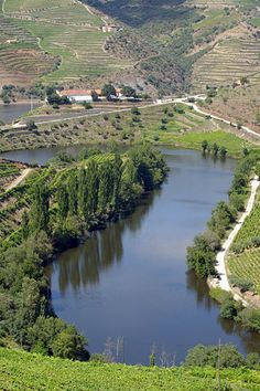 Tedo River joins the Douro (also seeing the Quinta do Tedo) District of Armamar